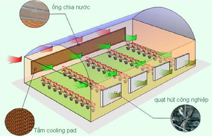 Hệ thông làm mát nhà xưởng bằng tấm Cooling Pad 2
